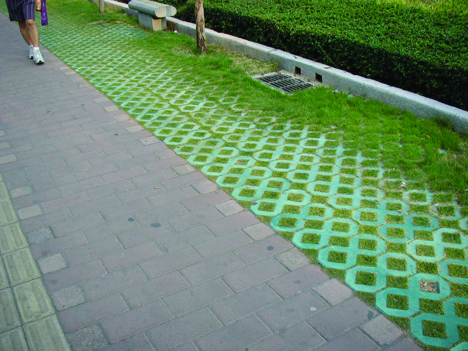 Pervious Pavement - National Association of City ...