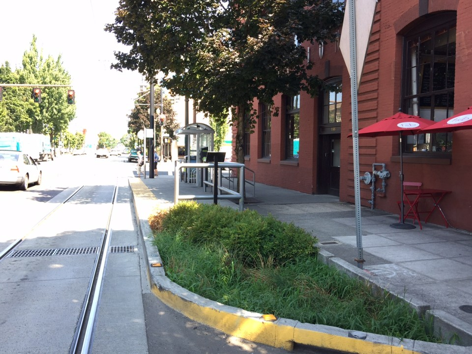 Bioswale on NW 23rd Ave, Portland (credit: Ben Baldwin)