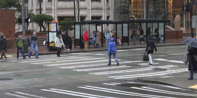 Pedestrian Access & Networks