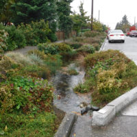 Why Sustainable Stormwater Management Matters