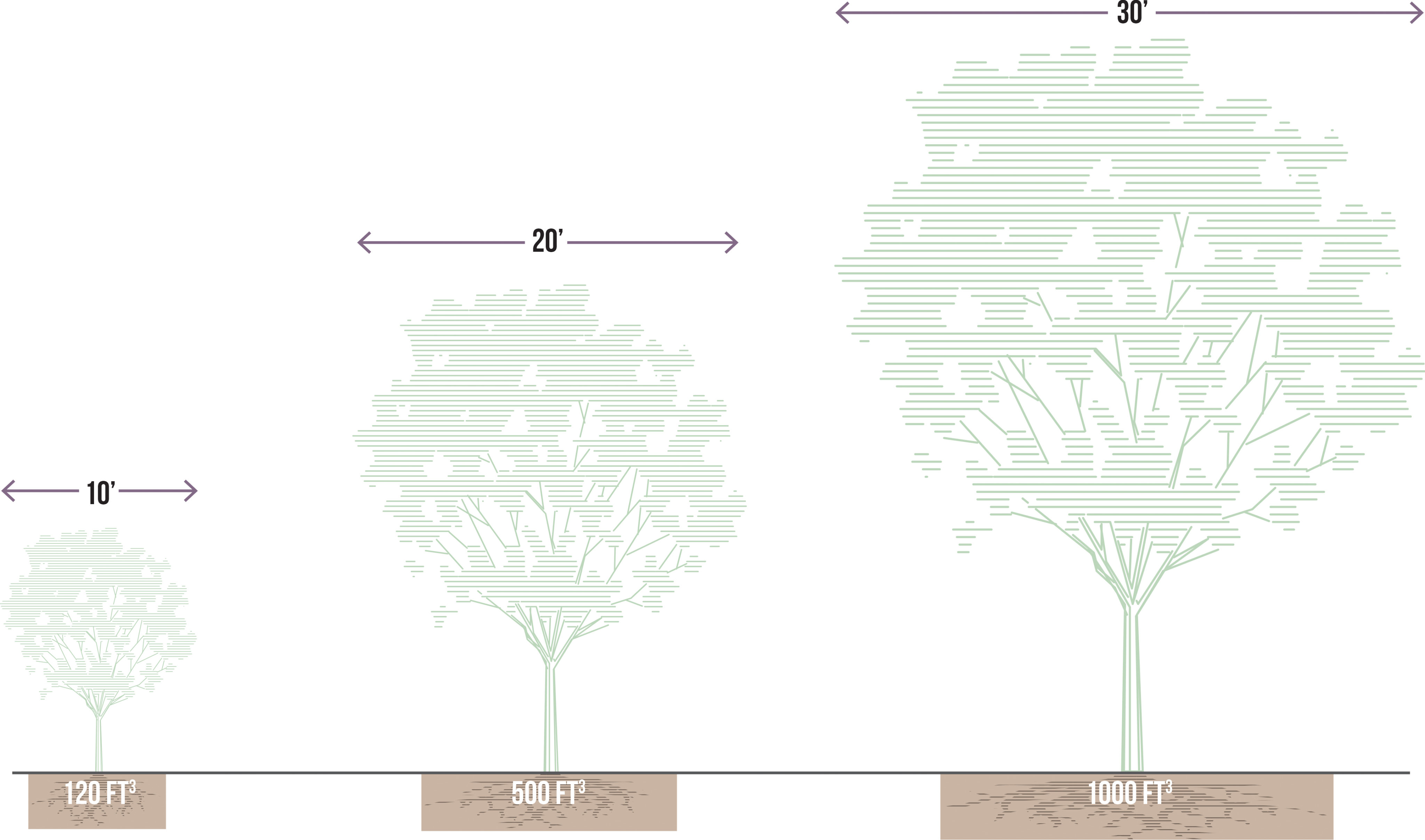 Stormwater Tree | National Association of City