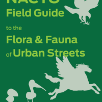 NACTO Releases Field Guide to the Flora and Fauna of Urban Streets
