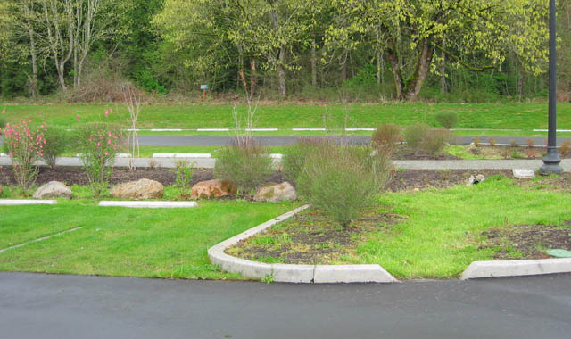Parking Lot Bioswale - Vancouver, WA